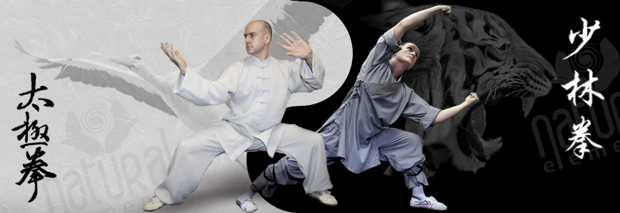 Natural Elements Tai Chi, Kung Fu and Qi Gong - Welcome Page Header Photo